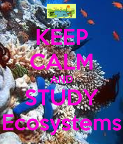 Poster: KEEP CALM AND STUDY Ecosystems