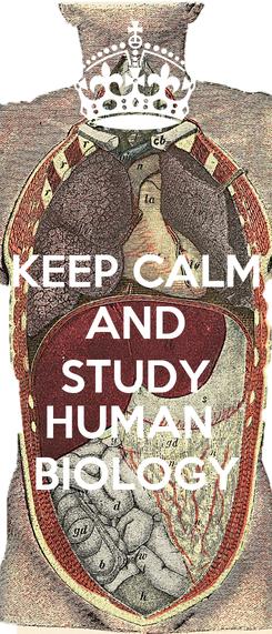 Poster: KEEP CALM AND STUDY HUMAN  BIOLOGY