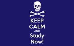 Poster: KEEP CALM AND Study Now!