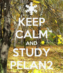 Poster: KEEP CALM AND STUDY PELAN2