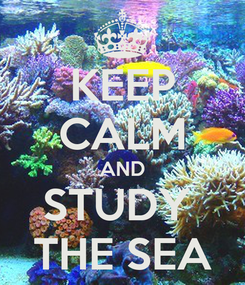 Poster: KEEP CALM AND STUDY  THE SEA