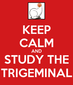 Poster: KEEP CALM AND STUDY THE TRIGEMINAL