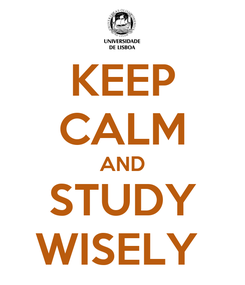 Poster: KEEP CALM AND STUDY WISELY