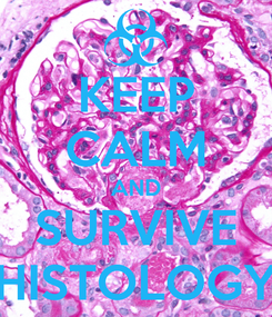 Poster: KEEP CALM AND SURVIVE HISTOLOGY