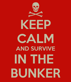 Poster: KEEP CALM AND SURVIVE IN THE   BUNKER