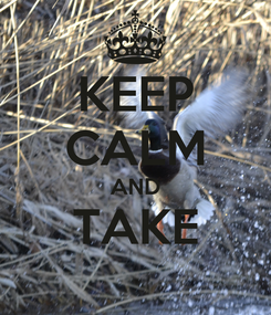 Poster: KEEP CALM AND TAKE