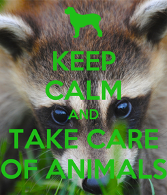 Poster: KEEP CALM AND TAKE CARE OF ANIMALS