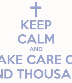 Poster: KEEP CALM AND TAKE CARE OF THOUSAND THOUSAND SHEEP