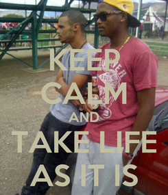Poster: KEEP CALM AND TAKE LIFE AS IT IS