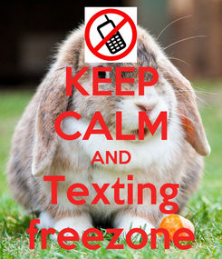 Poster: KEEP CALM AND Texting freezone