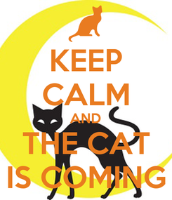 Poster: KEEP CALM AND THE CAT IS COMING