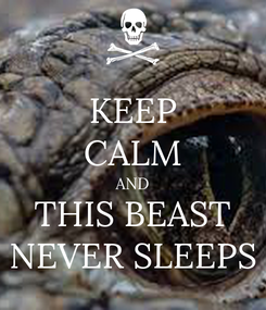 Poster: KEEP CALM AND THIS BEAST NEVER SLEEPS