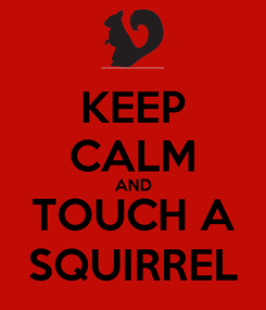 Poster: KEEP CALM AND TOUCH A SQUIRREL