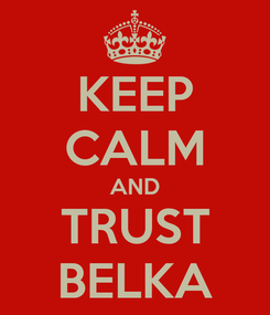 Poster: KEEP CALM AND TRUST BELKA