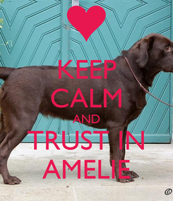 Poster: KEEP CALM AND TRUST IN AMELIE