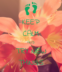 Poster: KEEP CALM AND TRY NEW THINGS