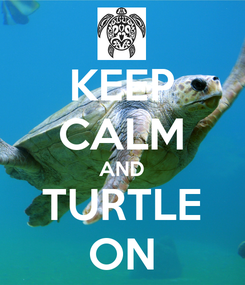 Poster: KEEP CALM AND TURTLE ON