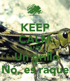 Poster: KEEP CALM AND  Un grillo  No, es raquel