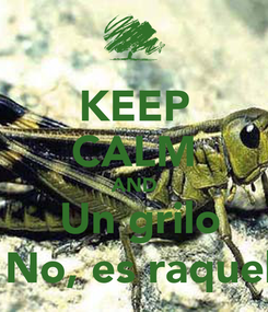 Poster: KEEP CALM AND  Un grilo  No, es raquel