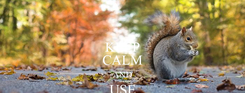 Poster: KEEP CALM AND USE TST