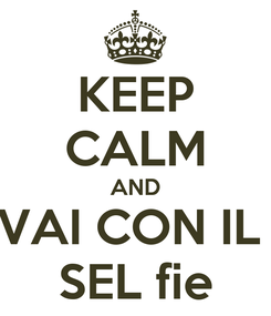 Poster: KEEP CALM AND VAI CON IL  SEL fie