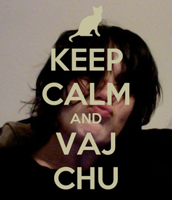 Poster: KEEP CALM AND VAJ CHU