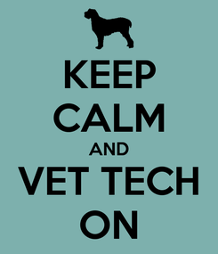 Poster: KEEP CALM AND VET TECH ON