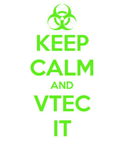 Poster: KEEP CALM AND VTEC IT