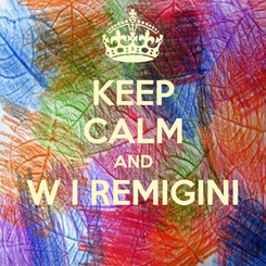 Poster: KEEP CALM AND W I REMIGINI