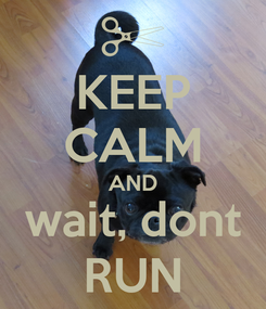 Poster: KEEP CALM AND wait, dont RUN