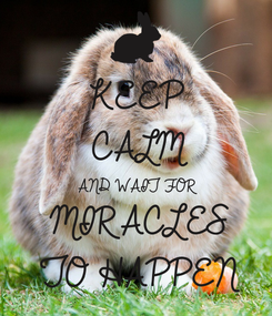 Poster: KEEP CALM AND WAIT FOR MIRACLES TO HAPPEN