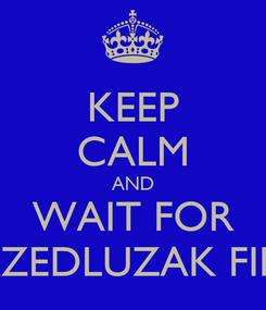 Poster: KEEP CALM AND WAIT FOR PRZEDLUZAK FILM