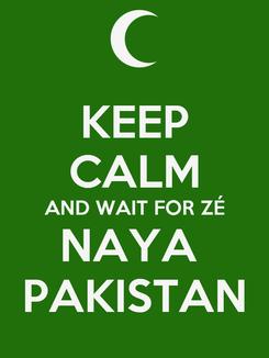 Poster: KEEP CALM AND WAIT FOR ZÉ NAYA  PAKISTAN