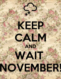 Poster: KEEP CALM AND WAIT  NOVEMBER!