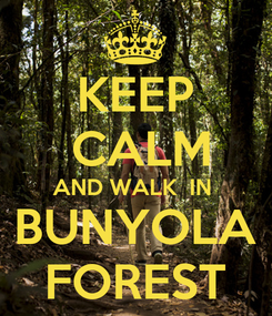 Poster: KEEP  CALM AND WALK  IN  BUNYOLA FOREST