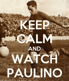 Poster: KEEP CALM AND WATCH PAULINO