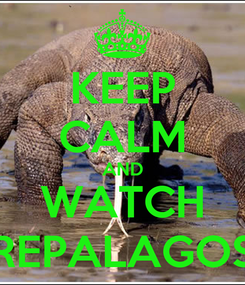 Poster: KEEP CALM AND WATCH REPALAGOS