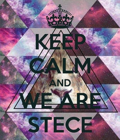 Poster: KEEP CALM AND WE ARE STECE