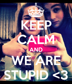 Poster: KEEP CALM AND WE ARE STUPID <3