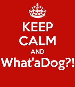 Poster: KEEP CALM AND What'aDog?!