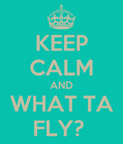 Poster: KEEP CALM AND WHAT TA FLY?