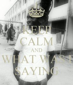 Poster: KEEP CALM AND WHAT WAS I SAYING