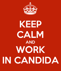 Poster: KEEP CALM AND WORK IN CANDIDA