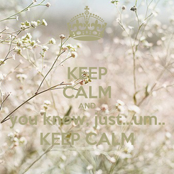 Poster: KEEP CALM AND you know, just...um.. KEEP CALM