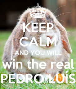 Poster: KEEP CALM AND YOU WILL win the real PEDRO LUÍS