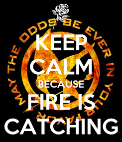 Poster: KEEP CALM BECAUSE FIRE IS CATCHING