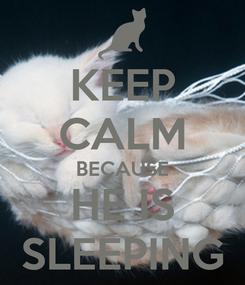 Poster: KEEP CALM BECAUSE HE IS SLEEPING