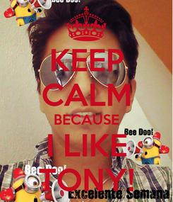 Poster: KEEP CALM BECAUSE I LIKE TONY!