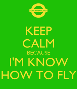 Poster: KEEP CALM BECAUSE I'M KNOW HOW TO FLY