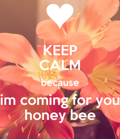 Poster: KEEP CALM because im coming for you honey bee